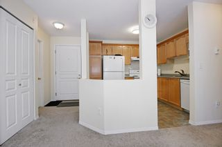 "Photo 6: 407 33478 ROBERTS Avenue in Abbotsford: Central Abbotsford Condo for sale in ""Aspen Creek"" : MLS®# R2173425"