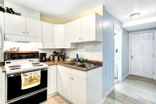 Photo 21: 8105 159 Street in Edmonton: Zone 22 House for sale : MLS®# E4260068