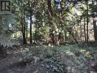 Photo 9: 1239/1241 VANCOUVER BLVD in Savary Island: Vacant Land for sale : MLS®# 16136