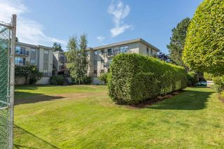 """Photo 11: 104 20350 54TH Avenue in Langley: Langley City Condo for sale in """"Coventry Gate"""" : MLS®# R2096484"""