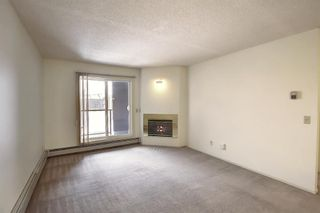 Photo 13: 2031 Edenwold Heights NW in Calgary: Edgemont Apartment for sale : MLS®# A1066741
