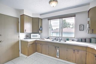 Photo 11: 1223 48 Avenue NW in Calgary: North Haven Detached for sale : MLS®# A1121377