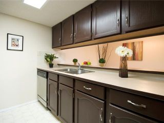 Photo 3: 202 2011 UNIVERSITY Drive NW in CALGARY: C-416 Condo for sale (Calgary)  : MLS®# C3484383