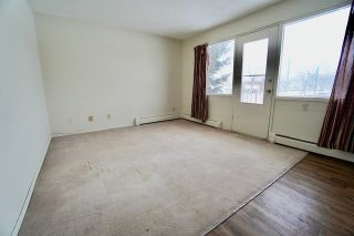 Photo 13: 10645 113 Street in Edmonton: Zone 08 Multi-Family Commercial for sale : MLS®# E4259647
