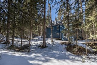 Photo 45: 35 Burntall Drive: Bragg Creek Detached for sale : MLS®# A1090777
