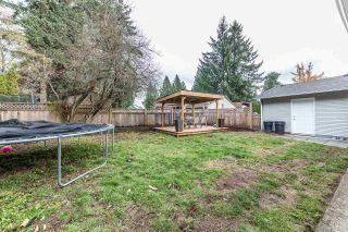 Photo 17: 21096 PENNY Lane in Maple Ridge: Southwest Maple Ridge House for sale : MLS®# R2223067