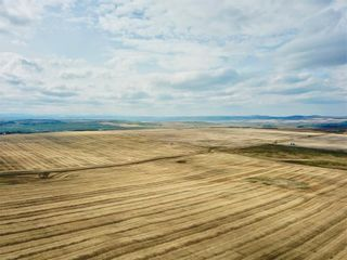 Photo 5: 1/2 Mile N of 434 Ave on 32 ST W: Rural Foothills County Land for sale : MLS®# C4243509