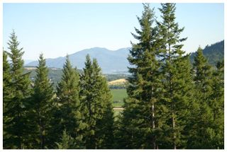 Photo 32: 3040 Fosbery Road: White Lake House for sale (Shuswap)  : MLS®# 101429927