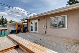 Photo 32: 380 Alcott Crescent SE in Calgary: Acadia Detached for sale : MLS®# A1130065