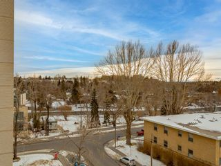 Photo 19: 6F 133 25 Avenue SW in Calgary: Mission Apartment for sale : MLS®# A1061991