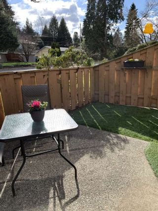 """Photo 27: 3059 268 Street in Langley: Aldergrove Langley Townhouse for sale in """"Bakerview"""" : MLS®# R2550637"""