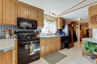 Photo 15: 249 Erin Woods Circle SE in Calgary: Erin Woods Detached for sale : MLS®# A1147067