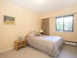 """Photo 16: 113 3787 W 4TH Avenue in Vancouver: Point Grey Condo for sale in """"Andrea Apartments"""" (Vancouver West)  : MLS®# R2085313"""