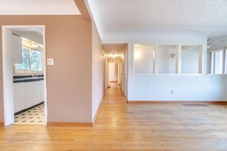 Photo 33: 949 McBriar Ave in Saanich: SE Lake Hill House for sale (Saanich East)  : MLS®# 854961