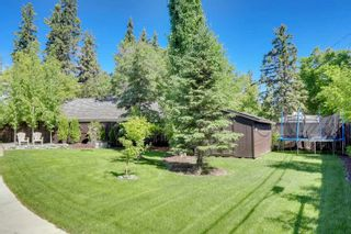 Photo 6: 7821 SASKATCHEWAN Drive in Edmonton: Zone 15 House for sale : MLS®# E4262603