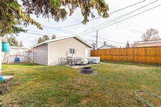 Photo 27: 260 Van Horne Crescent NE in Calgary: Vista Heights Detached for sale : MLS®# A1144476