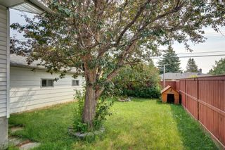 Photo 24: 2204 38 Street SW in Calgary: Glendale Detached for sale : MLS®# A1128360