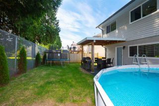 Photo 36: 20489 DALE Drive in Maple Ridge: Southwest Maple Ridge House for sale : MLS®# R2590609