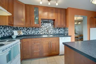 Photo 10: 40 Abergale Way NE in Calgary: Abbeydale Detached for sale : MLS®# A1093008