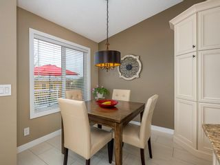 Photo 13: 101 Appleside Close SE in Calgary: Applewood Park Detached for sale : MLS®# A1128476