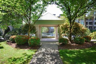 """Photo 20: 203A 2615 JANE Street in Port Coquitlam: Central Pt Coquitlam Condo for sale in """"BURLEIGH GREEN"""" : MLS®# R2090687"""