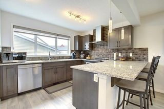 Photo 6: 8 COPPERPOND Avenue SE in Calgary: Copperfield Detached for sale : MLS®# C4296970