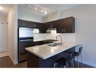 Photo 9: # 316 41105 TANTALUS RD in Squamish: Tantalus Condo for sale : MLS®# V1064218