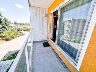 Photo 15: 305 4455C Greenview Drive NE in Calgary: Greenview Apartment for sale : MLS®# A1133635
