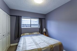 Photo 10: 3758 COAST MERIDIAN Road in Port Coquitlam: Oxford Heights House for sale : MLS®# R2420873