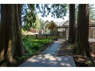 Photo 20: 2891 138 Street in Surrey: Elgin Chantrell House for sale (South Surrey White Rock)  : MLS®# R2130313