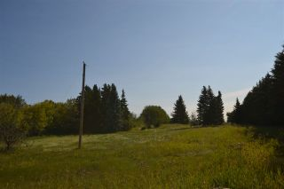 Photo 4: 54325 RR 255: Rural Sturgeon County Rural Land/Vacant Lot for sale : MLS®# E4235892