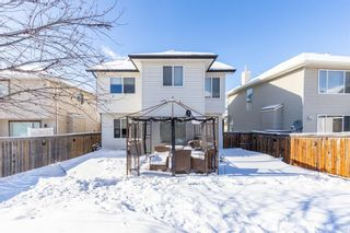 Photo 42: 85 Evansmeade Circle NW in Calgary: Evanston Detached for sale : MLS®# A1067552