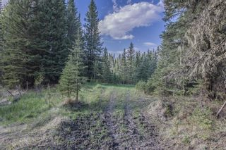 Photo 16: 231175 Bracken Road in Rural Rocky View County: Rural Rocky View MD Land for sale : MLS®# A1116621
