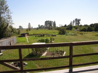 Photo 45: 19394 FENTON ROAD in PITT MEADOWS: Home for sale : MLS®# V1027214