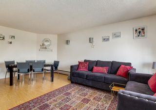 Photo 13: 209 1900 25A Street SW in Calgary: Richmond Apartment for sale : MLS®# A1101426