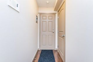 Photo 8: 204 7111 80 Avenue in Edmonton: Zone 17 Condo for sale : MLS®# E4256387
