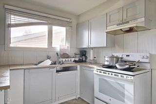 Photo 13: 20 Whitefield Close NE in Calgary: Whitehorn Detached for sale : MLS®# A1101190