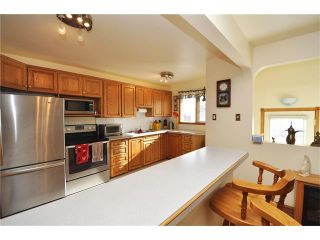 Photo 15: 2407 52 Avenue SW in Calgary: North Glenmore Park House for sale : MLS®# C4087732