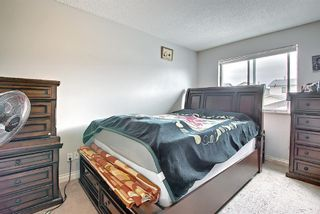 Photo 17: 142 Martindale Boulevard NE in Calgary: Martindale Detached for sale : MLS®# A1111282