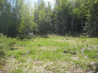 Photo 4: 9 Dogwood Crescent in Eagle Bay: Land Only for sale : MLS®# 10008245