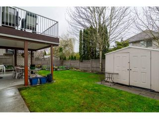 """Photo 19: 22319 50 Avenue in Langley: Murrayville House for sale in """"UPPER MURRAYVILLE"""" : MLS®# R2154621"""