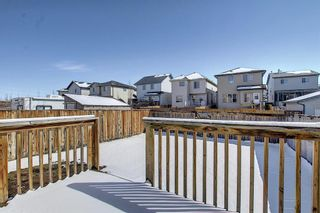 Photo 18: 161 Covebrook Place NE in Calgary: Coventry Hills Detached for sale : MLS®# A1097118