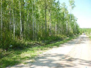 Photo 3: 5 Smits Avenue in Codette: Lot/Land for sale : MLS®# SK834455