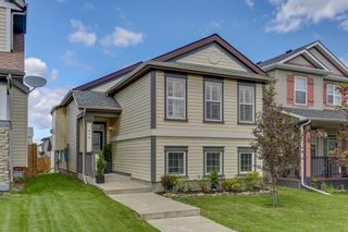 Photo 35: 414 SAGEWOOD Drive SW: Airdrie Detached for sale : MLS®# C4256648