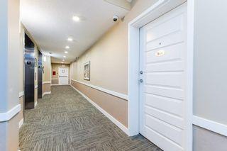 Photo 5: 904 2755 109 Street in Edmonton: Zone 16 Condo for sale : MLS®# E4256733