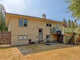 Photo 22: 636 McKenzie Ave in VICTORIA: SW Glanford House for sale (Saanich West)  : MLS®# 796547