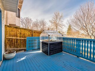 Photo 35: 64 Sanderling Hill in Calgary: Sandstone Valley Detached for sale : MLS®# A1090715