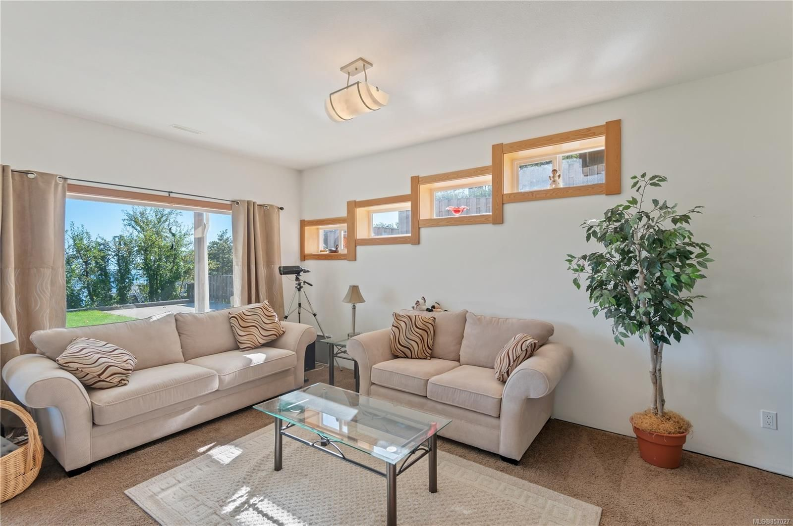 Photo 48: Photos: 253 S Alder St in : CR Campbell River South House for sale (Campbell River)  : MLS®# 857027