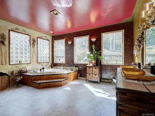 Photo 24: 6224 Llanilar Rd in : Sk East Sooke House for sale (Sooke)  : MLS®# 851492