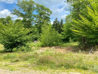 Photo 4: Lot 2 Highway 14 in Windsor: 403-Hants County Vacant Land for sale (Annapolis Valley)  : MLS®# 202104608